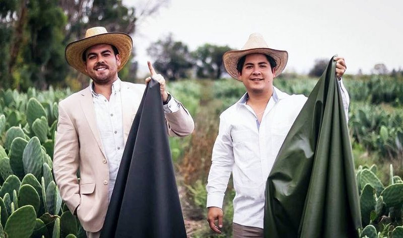 Faux Leather Made Out of Prickly Pear Cactus Has Been Created By These Two Guys In Mexico