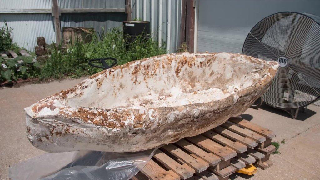 myconoe mushroom canoe 2
